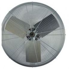 Circulator Fan Head - 101626662