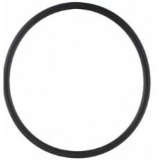 Individual O-Rings - 102213084